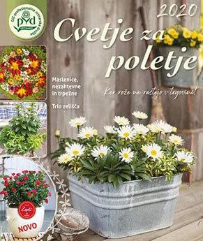 cvetje-za-poletje-cover