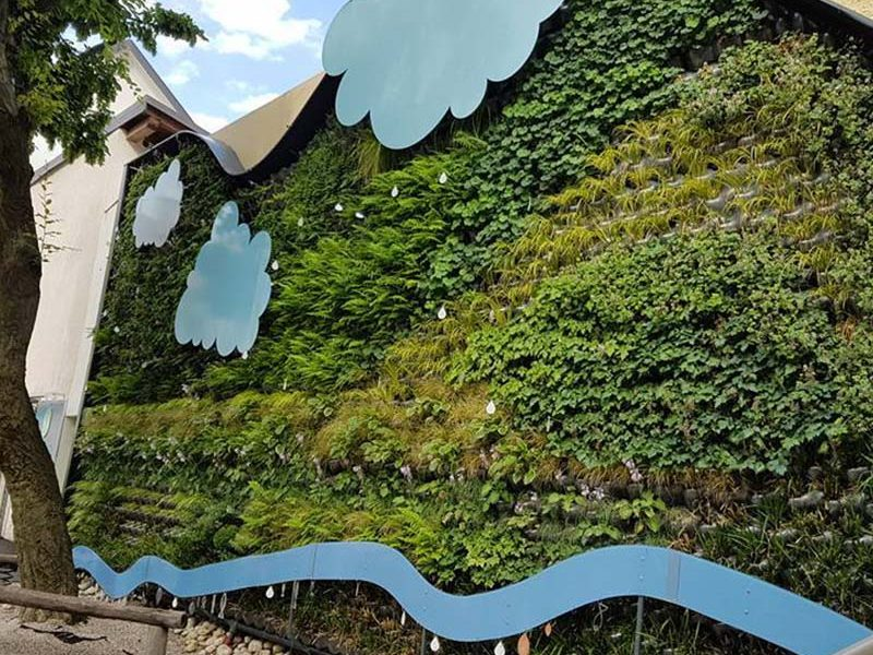 o-nas-slika-zelena-stena